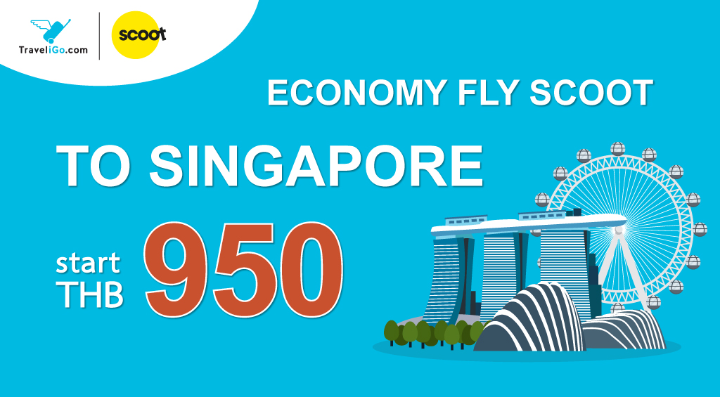 ECONOMY FLY SCOOT TO SINGAPORE!